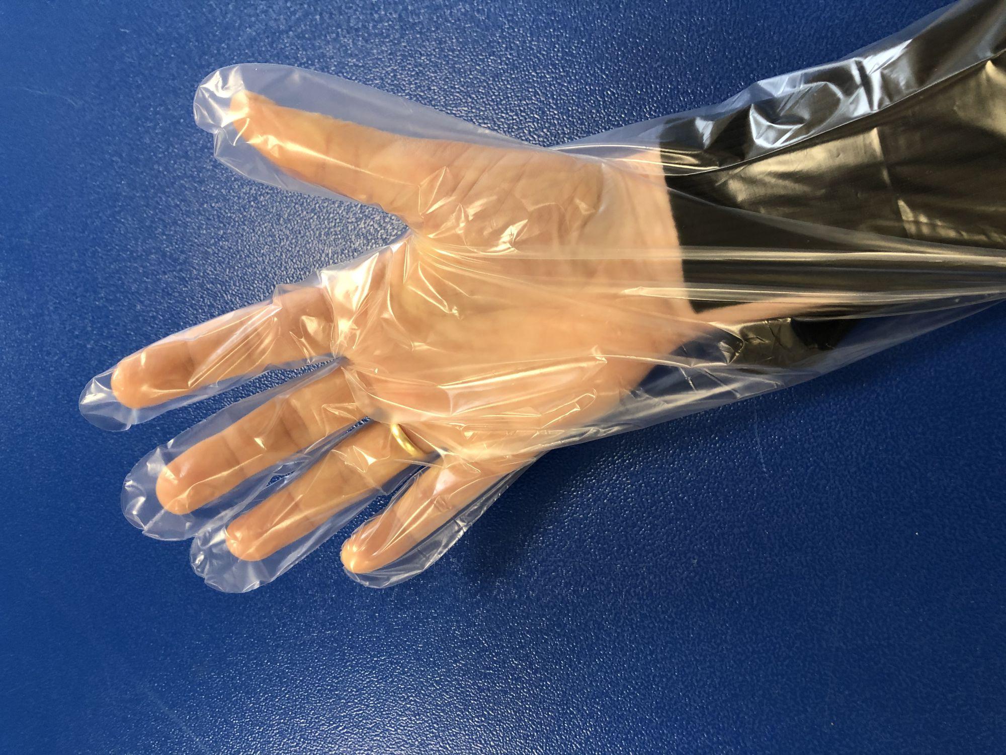 20157 transparante handschoen 2