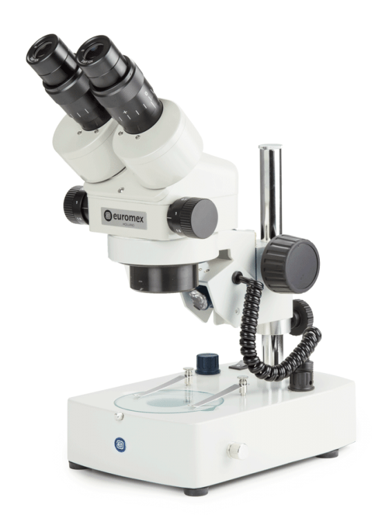 stereomicroscope embryo zserie trinocular