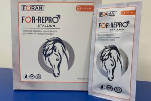 For Repro, begin er nu mee, voor het dekseizoen!